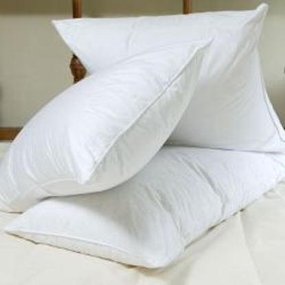 Picture of 450gsm Polycotton Pillow