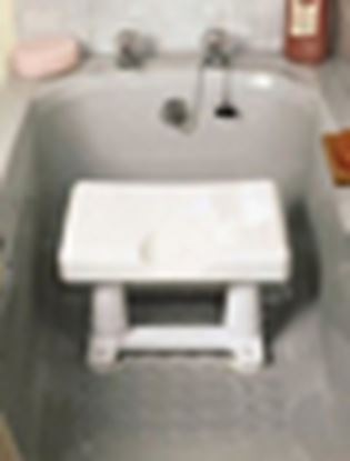 """Picture of Alisa Bath Seat (8"""")"""