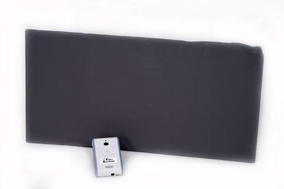 Picture of Sentry Floor Monitor with One Year Floor Package