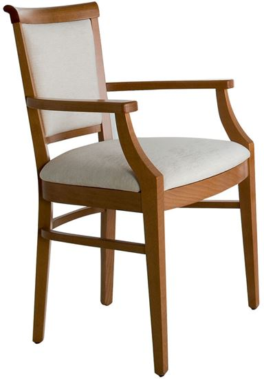 Monza Carver Chair Andway Healthcare Care Home Supplies And