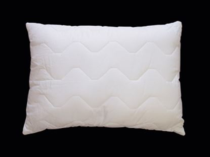 Picture of FR Source 5 Pillow 500gsm