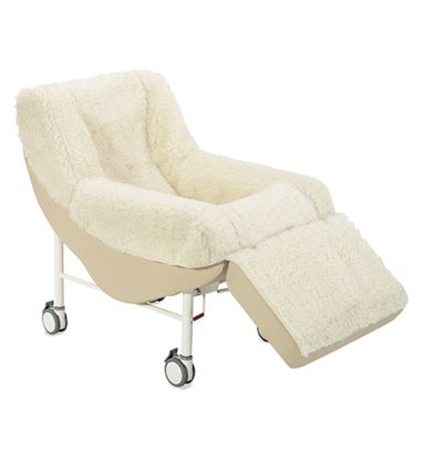 Picture of CQR Mobile Chair