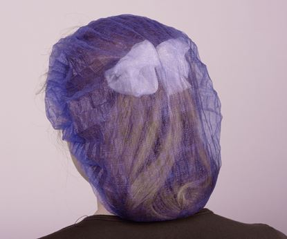 Picture of Hair Nets - Blue (144)