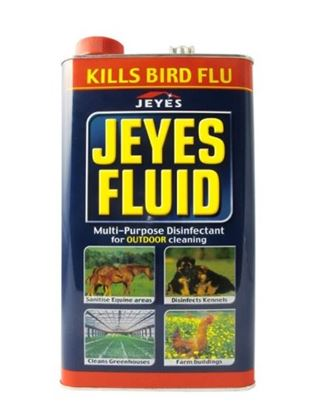 Picture of Jeyes Fluid ( 5 L )