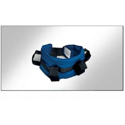 Picture of Maxi Handling Belt