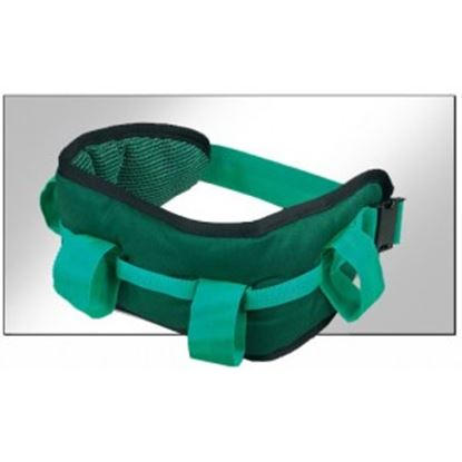 Picture of Maxi Deluxe Handling Belt