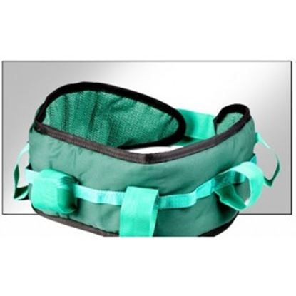 Picture of Maxi Plus Deluxe Handling Belt