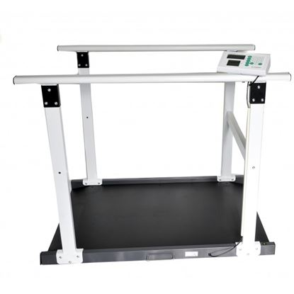 Picture of Class III Multi-Purpose Wheelchair Scale with Handrail