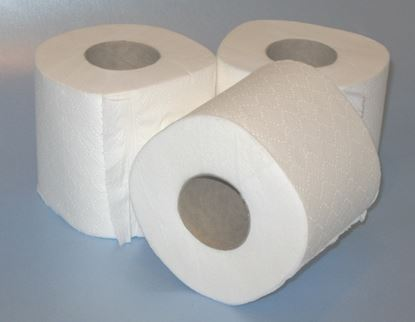 Picture of WC Roll 2ply Quilted (36)