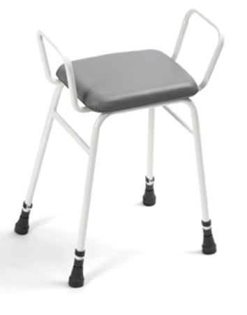 Picture for category Perching Stool