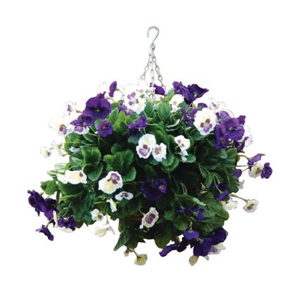 """Picture of Purple & White Pansy Hanging Basket Ball 22"""""""