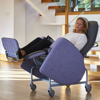 Picture of Florien II 450 Chair
