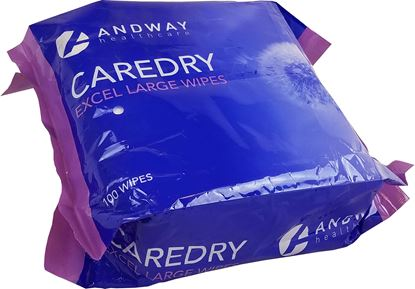 Picture of CAREDRY Excel Large Wipe (100) - Version 2 Flat Packed