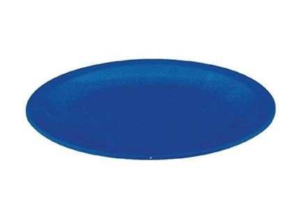 Picture of Polycarbonate Plate Blue 172mm (12)
