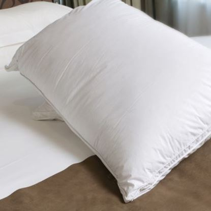 Picture of 500gsm Source 2 FR Pillow