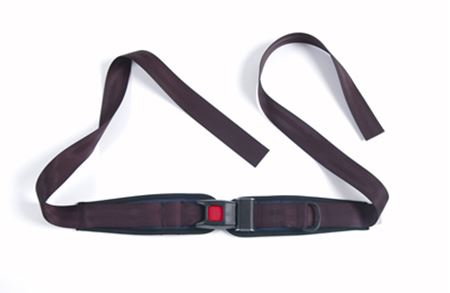 Picture for category Lap Belt